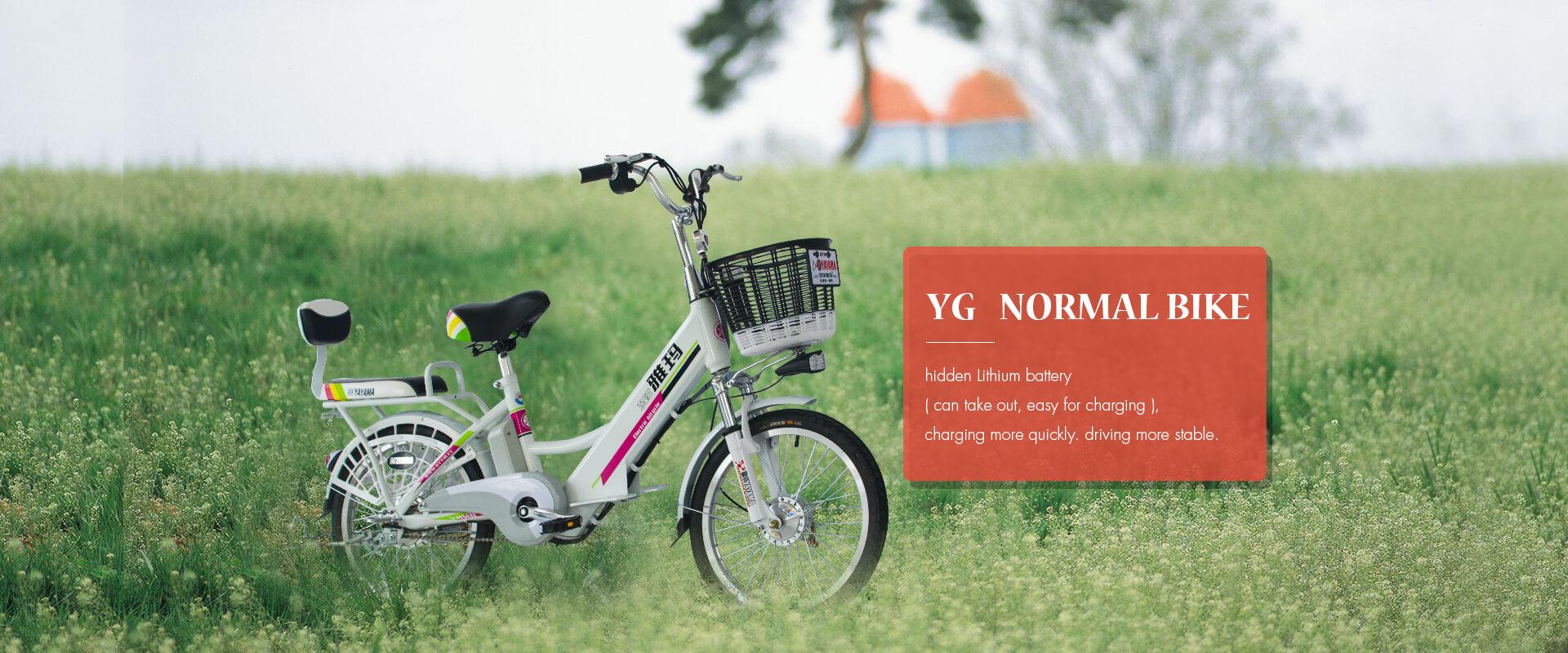 YG Normal Bicycle