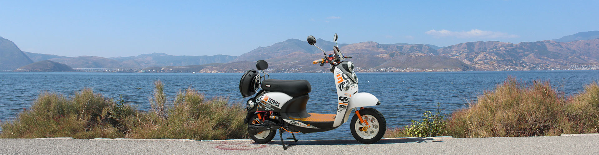 1000W Electric Motorcycle